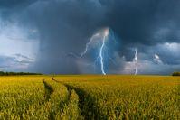 """Bild: """"obs/WetterOnline Meteorologische Dienstleistungen GmbH/WetterOnline / Shutterstock"""""""