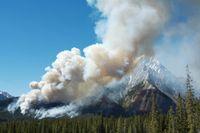 """Waldbrand in Kanada. Die jährlich abgebrannten Flächen als auch die durchschnittliche Größe der Feuer könnten künftig deutlich steigen, schreiben die Forscher des Helmholtz-  Zentrums für Umweltforschung (UFZ) und der University of Michigan in der Dezember-Ausgabe des Fachblattes """"The American Naturalist"""". Quelle: Foto: Scott Latham/Fotolia (idw)"""