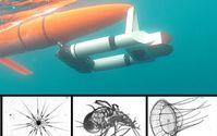 """""""Zooglider"""" und Mikroorganismen aus dem Meer."""