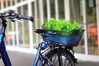 Bild: Lichtbild Austria / pixelio.de