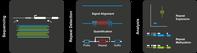 Schrittweise reicherten die Forschenden zunächst selektiv die Moleküle mit Repeats an, analysierten das elektrische Signal und bestimmten so Länge der Repeats und ihre epigenetische Signatur. Quelle: Pay Gießelmann, Max-Planck-Institut für molekulare Genetik (idw)