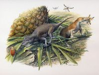 Die frühen Säugetiere Morganucodon und Kuehneotherium bei der Jagd. Diese Tiere haben im frühen Jura Quelle: Bild: John Sibbick (idw)