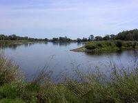 Die Mündung der Lausitzer Neiße in die Oder in Ratzdorf, Neißemünde. Bild: de.wikipedia.org