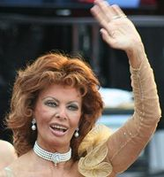 Sophia Loren Bild: Chrisa Hickey