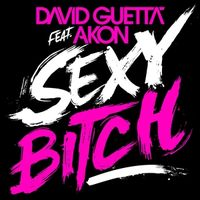 DAVID GUETTA Sexy Bitch