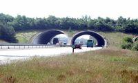 Eine Grünbrücke über die A50 bei Woeste Hoeve in den Niederlanden (Symbolbild)