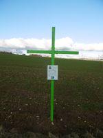 Agrarpolitik: Aktion Grüne Kreuze auf Ackerfläche im Wintergetreide