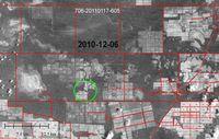Illegale Abholzung (grüner Kreis), Dezember 2010. Ein Großteil des umliegenden Waldes wurde bereits abgeholzt. Bild: GAT/ Survival