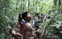Brasilien verbleiben drei Monate, um illegale Holzfäller vom Gebiet der Awá auszuweisen. Bild: D Pugliese/ Survival