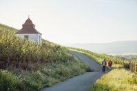 Die Weinberge sind eine tolle Kulisse für Wanderungen an der Nahe und bieten Panorama-Ausblicke über die Region.  Bild: Naheland-Touristik GmbH Fotograf: Peter Bender