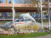 Connyland-Delfinarium weiterhin in der Kritik Bild: WDSF (pressrelations)