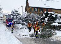 Bild: Freiw. Feuerwehr Oberteuringen