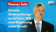 Thomas Seitz (2020)