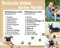 AGILA zeigt die beliebtesten Hunderassen 2011. Bild: AGILA Haustierversicherung AG (openPR)