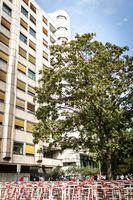 Sitz des Landesamt für Gesundheit und Soziales Berlin in der Turmstraße 21