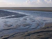 Wattenmeer wird Weltnaturerbe. Bild: Hans-Ulrich Rösner / WWF