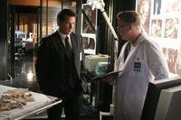 """""""CSI"""" meets """"Without a Trace"""" - am Samstag, 27. Juni 2009, um 20.15 Uhr bei kabel eins als Deutschland-Premiere (c) Kabel1"""