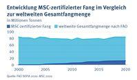 15 Prozent der weltweiten Fangmenge sind aktuell MSC-zertifiziert. Bild: MSC, Florence Bouchain Fotograf: Florence Bouchain