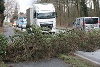 """Sturmschäden. Sturm Frederike wütet in Hilden und Haan, Flurstraße Haan. Bild: """"obs/Provinzial Rheinland Versicherungen/Staschik,Olaf (ola)"""""""