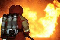 Ein Feuerlöschtrupp der Schwedischen Marine bekämpft unter schwerem Atemschutz einen Gebüdebrand während der Übung DISTEX im Rahmen von NOCO 2009. Bild: Marine / Björn Wilke