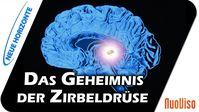 Dr. Heidi Wichmann: Die Zirbeldrüse als Schlüssel