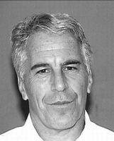 Polizeifoto von Jeffrey Epstein (2008)