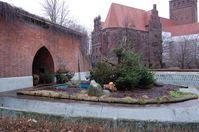 Der Bärenzwinger in Berlin. Bild:  VIER PFOTEN