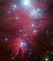 """""""Christmas Tree""""-Sternhaufen, aufgenommen mit dem ESO Very Large Telescope Quelle: (Credit: ESO) (idw)"""
