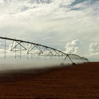 Bewässerung in Brasilien Bild:  © Peter Caton / WWF