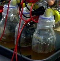 Verkabelter Urin-Tank: Sprit für Roboter der Zukunft. Bild: brl.ac.uk