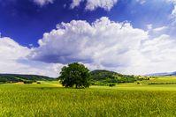 Heimat und Landschaft
