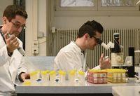 Mit dem Videomikroskop und Computermodellen verfolgen die Wissenschaftler Florian Altermatt (l) und Emanuel Fronhofer einzellige Wimperntierchen in ihrer künstlichen Mini-Welt. Quelle: Peter Pen, Eawag (idw)