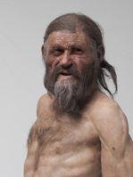 Neue Rekonstruktion des Iceman, im Südtiroler Archäologiemuseum zu sehen Quelle: Foto:  © Südtiroler Archäologiemuseum, Foto Ochsenreiter (idw)