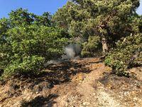 """Der Brand im Naturschutzgebiet """"Gans"""" Bild: Polizei"""