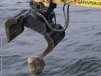 Einer der tonnenschweren Natursteine, die Greenpeace im Sylter Außenriff versenkt. Die Steine sollen das Riff vor zerstörerischer Fischerei schützen. Bild: Bente Stachowske / Greenpeace