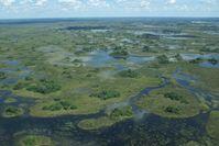 Okavangodelta ist das im Nordwest-Bezirk Botswanas gelegene Binnendelta des Okavangos.