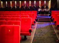 Kinosaal: Seriöse Filme werden eher geschätzt (Foto: pixelio.de/R. Sturm)