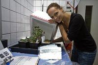 Im Labor: Maike Gleichenhagen von der Universität Bonn mit den teuersten und schwersten Kräutern der Welt. Bild: Uni Bonn