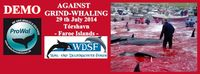 Aufruf zur Demonstration am 29. Juli 2014 in Tórshavn-Hoyvik (Färöer-Inseln) durch die Tierschutzorganisationen ProWal & Wal- und Delfinschutz-Forum (WDSF)