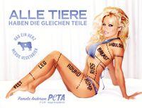 Bild: PETA Deutschland e. V.