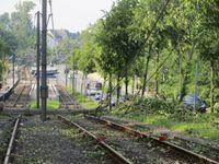 """Sturmfront """"Ela"""": Sturmschäden in Dortmund-Brechten"""
