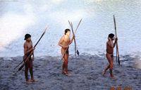 Sieben unkontaktierte Indigene nahmen im Juni Kontakt mit einer Gemeinde sesshafter Ashaninka-Indianer an der Grenze zwischen Brasilien und Peru auf. Brasilianische Behörden haben die Indigenen nach einem Grippe-Ausbruch behandelt. Bild: FUNAI