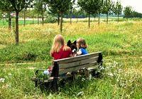 Freunde, Parkbank, Hund, Kinder (Symbolbild)