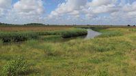 Das Einzugsgebiet des Limpopo-Flusses. Hier hat der ein Vorfahre des Menschen, Paranthropus robustus vor etwa zwei Millionen Jahren gelebt. Quelle: Foto: MARUM - Zentrum für Marine Umweltwissenschaften der Universität Bremen (idw)