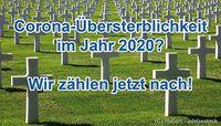 Bild: Impfkritik.de / Hubert - adobestock