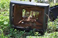 Fernsehen: Je mehr geschaut wird, desto ärmer, unglücklicher und kränker sind Menschen in der Regel (Symbolbild)