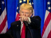 Donald Trump (2017)