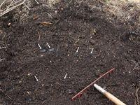 Selbst hergestellte Terra Preta: Gartenkompost mit Erde und Holzkohle (siehe Pfeile)