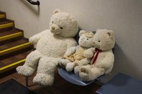 Teddybären Bild: Polizei