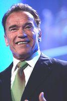 Arnold Schwarzenegger (Juni 2013)